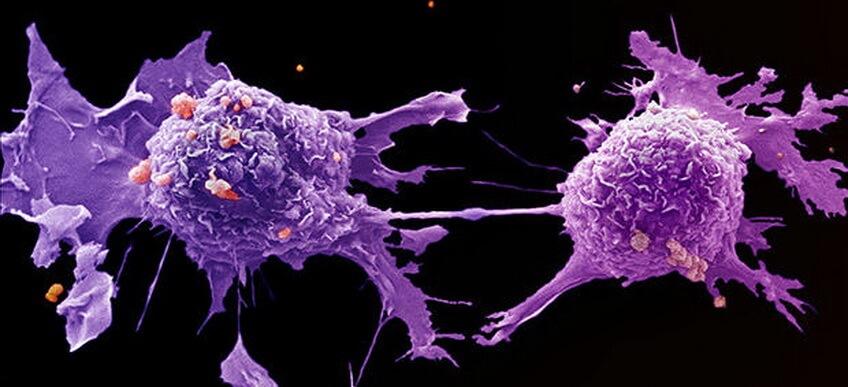 Cancer prevention vitamin c