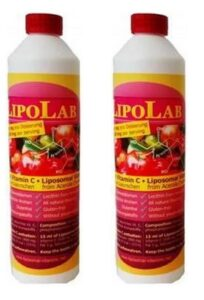 natürliches liposomales Vitamin C aus Acerola
